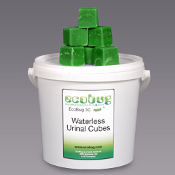 Eco_Bug_Cubes_50_Pack